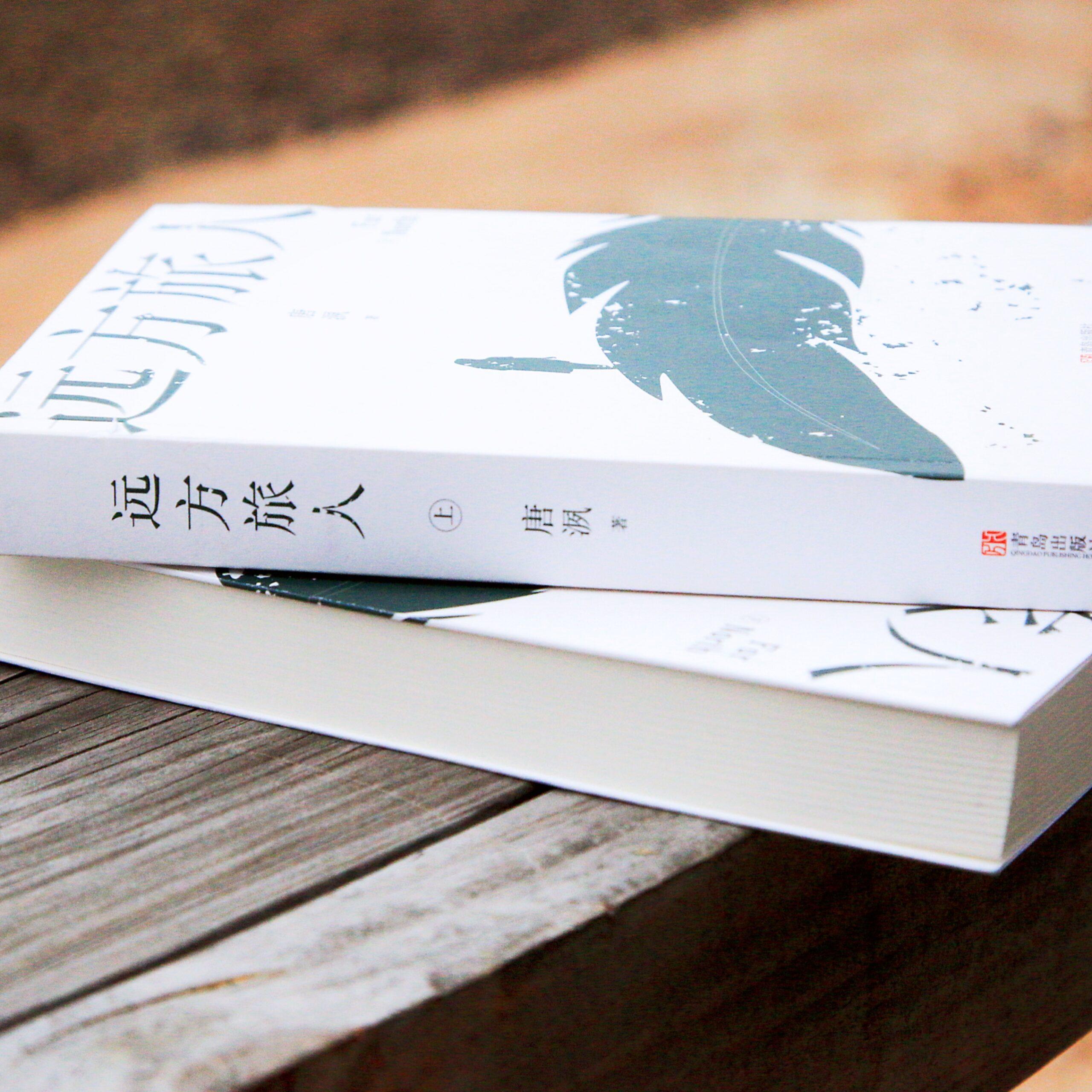 【推书/存档】远方旅人·唐洬